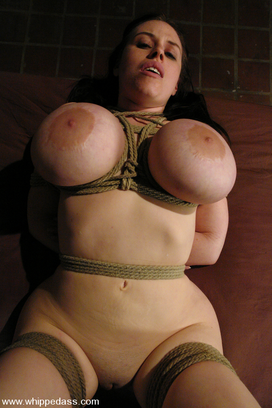 Huge breasts in bondage