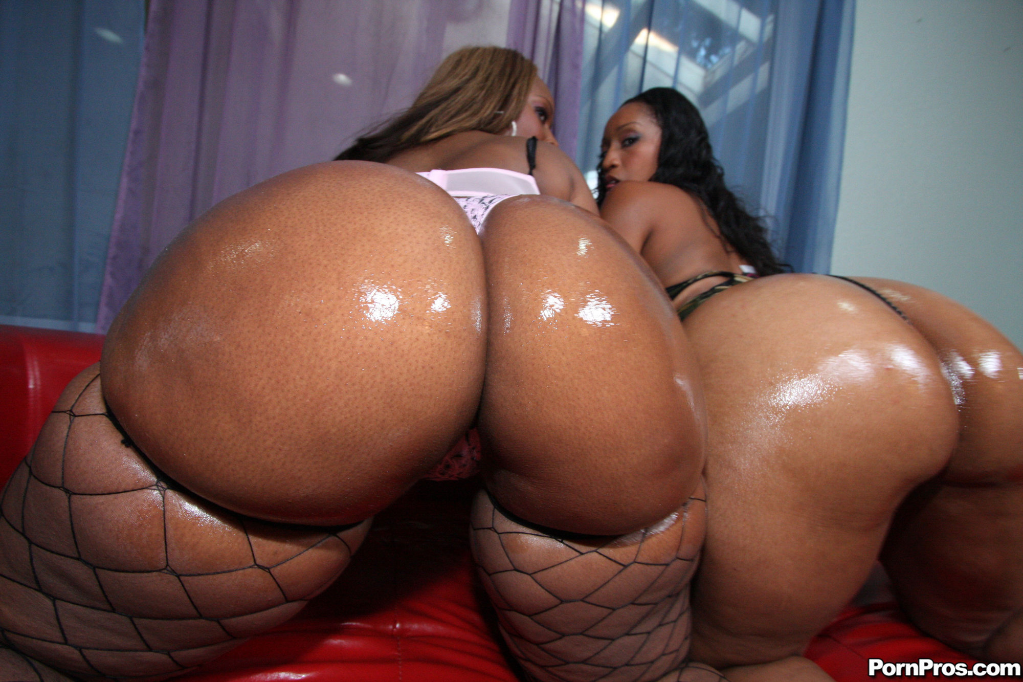 Fat black butt free download adult images