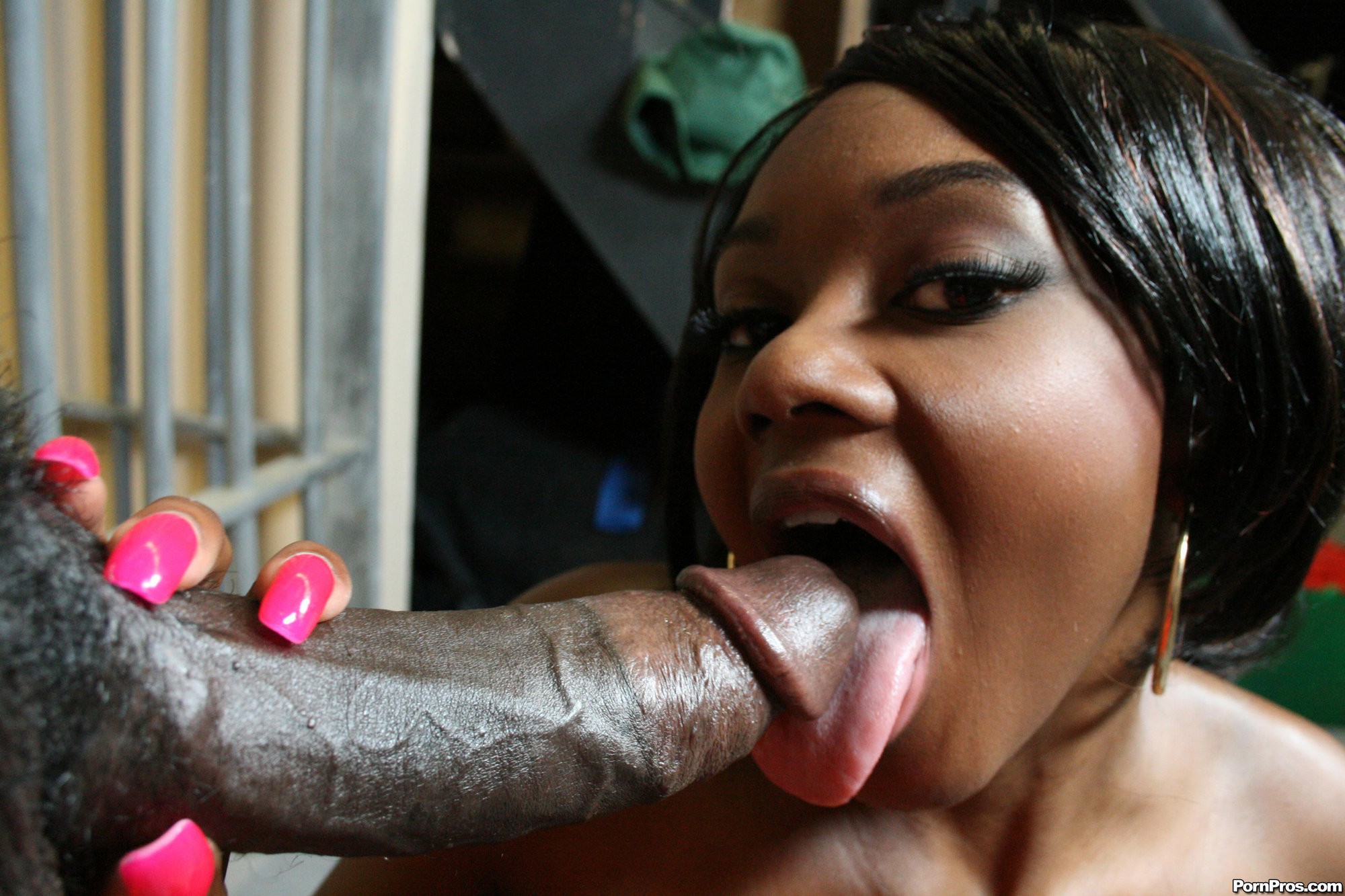 Hot Black Girl Gets Her Beauty Big Booty Flipped And Fucked Everywhich Way