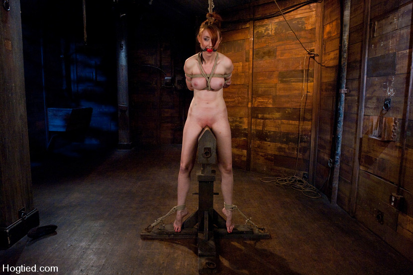 Apologise, but, Bdsm redhead on rack