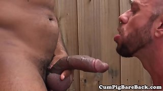 Suspended leather hairy-bear enjoys anal play
